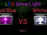 White Led Vs Redblue Led Grow Light Grow Test Part 1 Educational within dimensions 1920 X 1080